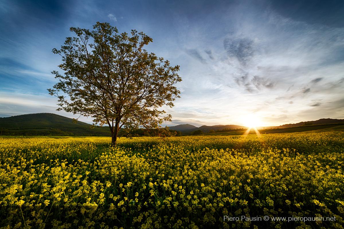 Toscana al tramonto